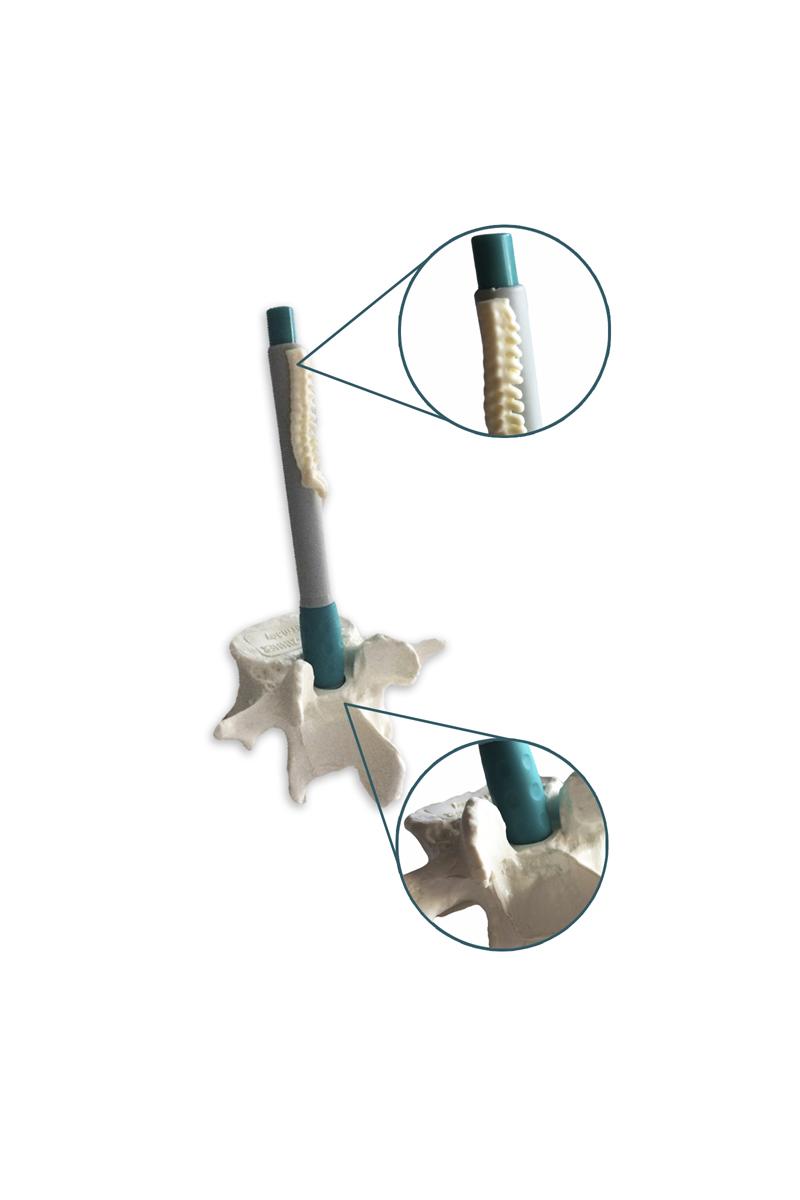 Conjunto suporte ou base para esferográfica em formato vértebra e esferográfica
